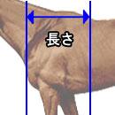 kata04.jpg